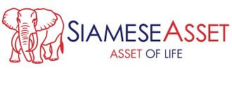 16.Siamese Asset